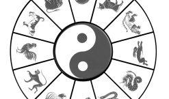 Signe astrologique chinois : quelles sont les années à retenir ?